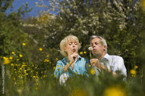 Germany, Baden Württemberg, Tübingen, Senior couple blowing on dandelions in meadow, portrait