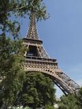 Torre Eifel escondida tras la vegetacion poster