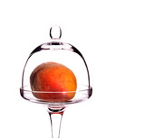 mellow succulent peach in the glass bowl poster