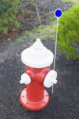 High angle view of a fire hydrant