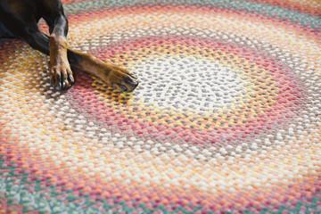Dot on a rug