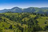 Eastern european mountain scenery in summer poster