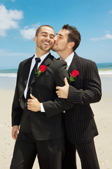 Gay wedding
