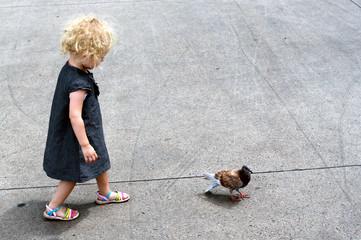 enfant et pigeon