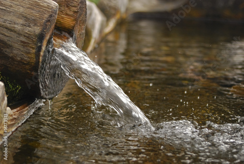 Wooden spring - 16173513