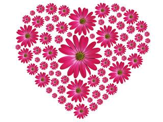 Blumenherz Pink