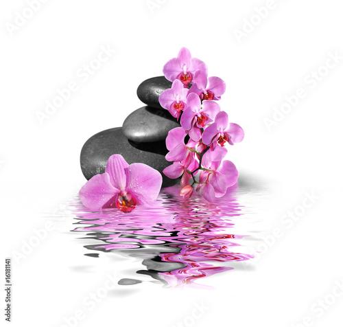 Papiers peints Orchidée Bien-être et SPA 2211