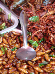 Thailand food stalls - fried insects nb.21