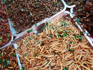 Thailand food stalls - fried insects nb.27