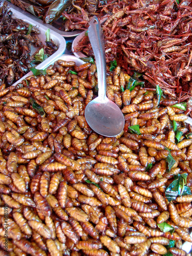 Thailand food stalls - fried insects nb.26