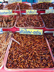 Thailand food stalls - fried insects nb.40