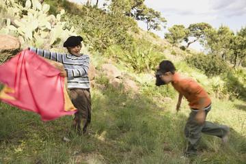 Boys having pretend bull fight