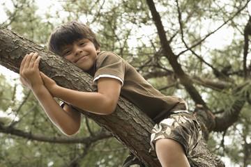 Boy relaxing on tree branch