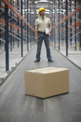Cardboard box and worker in warehouse