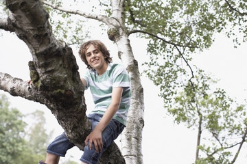 Boy climbing in tree