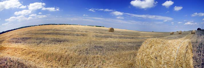 Ukrainian landskape with haystacks