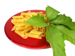 Uncooked pasta served on red plate