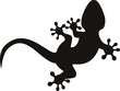 vector gecko tattoo isolated on withe background
