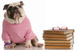 dog obedience school - bulldog sitting beside a stack of books