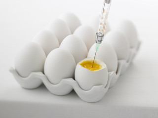Close up of syringe injecting yolk of egg