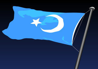 flag of turkestan