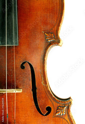 Part of violin on white background.