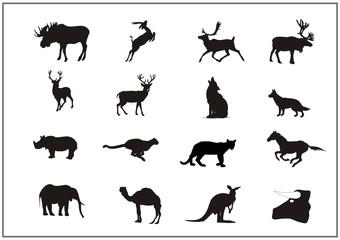 Tiere zwischen Norwegen und Afrika