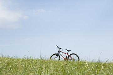 草原とマウンテンバイク