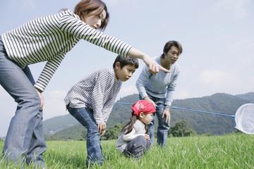 草原で虫を捕まえる家族