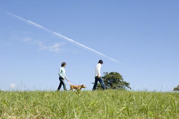犬の散歩をするカップル