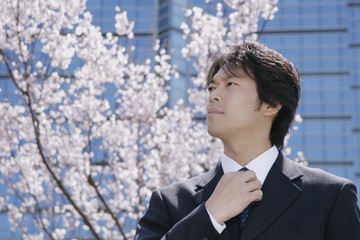 桜の花の前に立つスーツ姿の男性