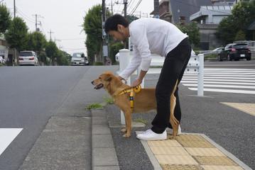 盲導犬のパピーウォーカー