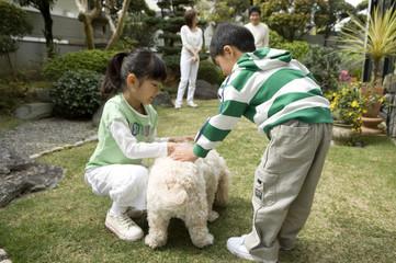 犬と遊ぶ子供たち