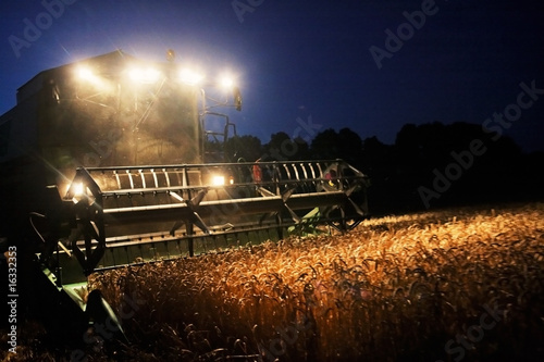Combine Harvester in the Cornfield 07 - 16332353
