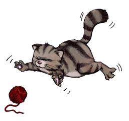 Katze, Kater, spielen, raufen, springen