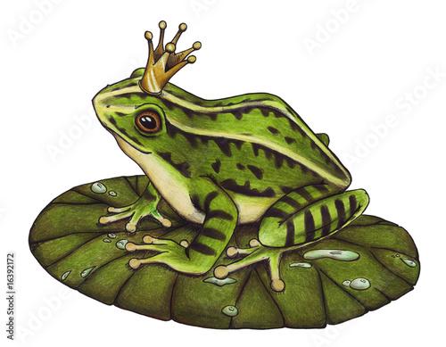 Leinwanddruck Bild Froschkönig, Frosch, König, Märchen, Buch, Krone