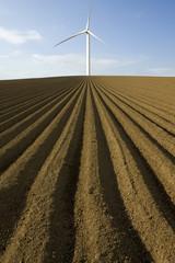 Wind turbine in ploughed field