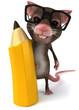 Souris et crayon