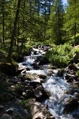 Rivière dans le Mercantour