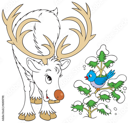 Reindeer and bird