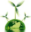 terre écologique avec éoliennes naturelles