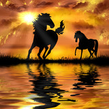 horse on a beautiful sunset background