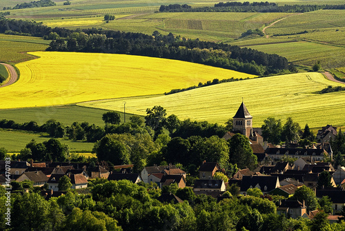 canvas print picture Chablis