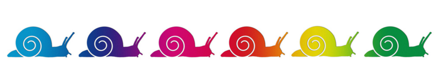 escargots couleur
