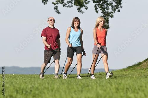 Drei Walker
