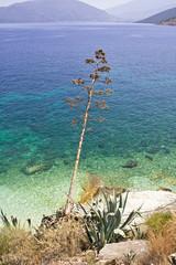 Agia Efimia, isola di Cefalonia, Grecia