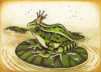 Froschkönig, Frosch, König, Märchen, Buch, Krone
