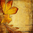 vintage paper background with autumn leaves