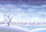 Fototapety Snowy rolling winter landscape and a small tree