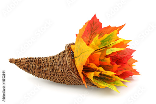 Cornucopia with colorful leaves isolated on white background